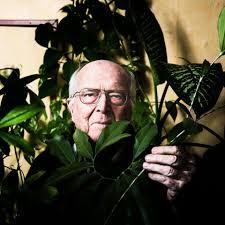 Expo : Architectures botaniques tropicales - 1