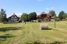 Bucherhof - Verkaufsstandorte für Zier- und Speisekürbisse