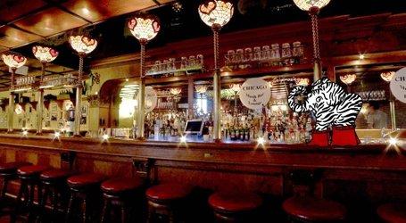 Der Zebrafant in der Chicago Bar