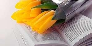 Bücherhits im Frühling