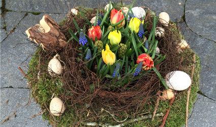Frühlingserwachen – Oster-Floristikworkshop