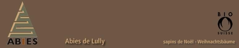 Abies de Lully - 1
