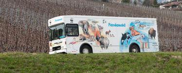 WWF Pandamobil-Fest