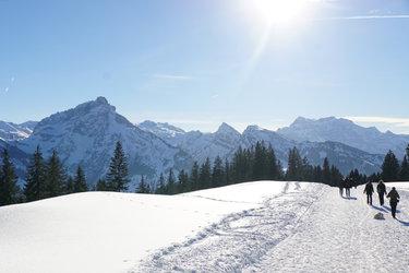 Winterwanderweg direkt vor dem Haus