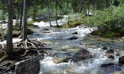 Die neuen Geschichten von Romano Cuonz handeln von Wasser, Flüssen, Seen...