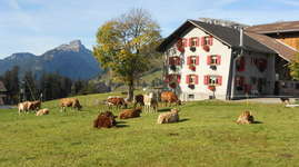 Bauernhof Salwideli: Doppelzimmer 1