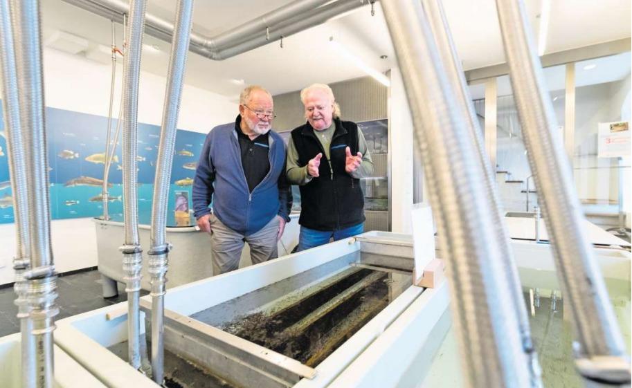 Rolf Krieg (rechts), Ehrenpräsident des Fischereivereins Zug, erklärt Besucher Ruedi Keiser das Langstrombecken. (Bild Roger Zbinden)