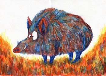 Exposition de dessin (Adrienne Barman)