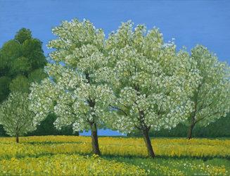 Blühende Bäume, Ölfarben