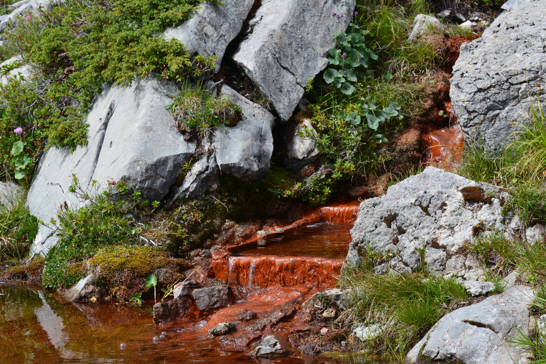 Die roten Quellen des Grimmiwassers