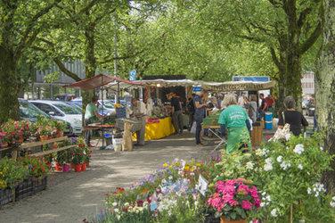 Wochenmarkt Promenade Frauenfeld - 1