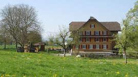 Swissfarm Wurzelbaumhaus