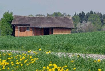 Altes Schützenhaus Baltenswil - 1