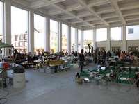 Floh-, Antik- und Sammlermarkt, Schaan