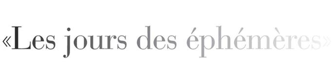Les jours des éphémères - 5. Festival ephemerer Kunst