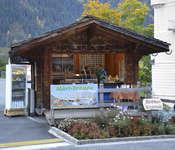 Grindelwalder Märthysi beim Baerplatz