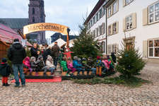 «Christmas fairy-tale forest» adventure playground activities