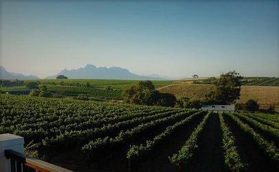 Südafrikanische Kyburg Weine und Musik auf Schloss Kyburg