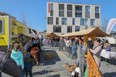 Ostermarkt, Raiffeisenplatz
