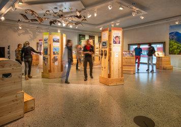 Ausstellung der Bündner Pärke - 1