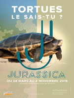 Tortues, le sais-tu ?