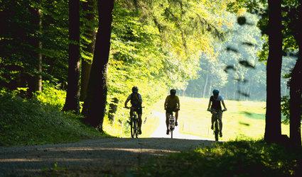 Themen-Bike-Tour: Jakob Stutz