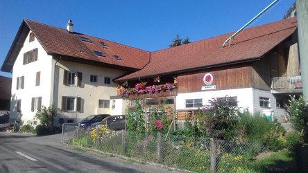 Hofladen Balmhof - 1