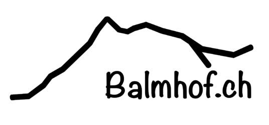 Balmhof - 1