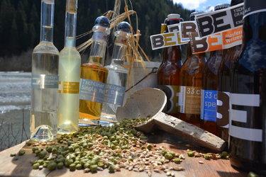 Brauereibesuch und Degustation