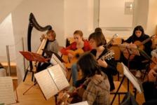 Saitenharmoniker Musiikschule St.Gallen