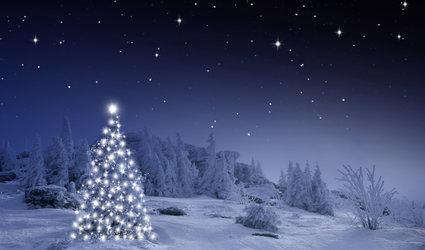Mönchi-Waldweihnacht für Gross und Chlii
