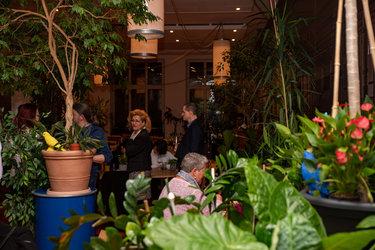 <strong>ABGESAGT</strong>Dschungel Restaurant mit Barbetrieb - 1