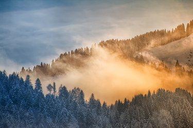 Wintererlebnis-Tour verschneite Landschaft