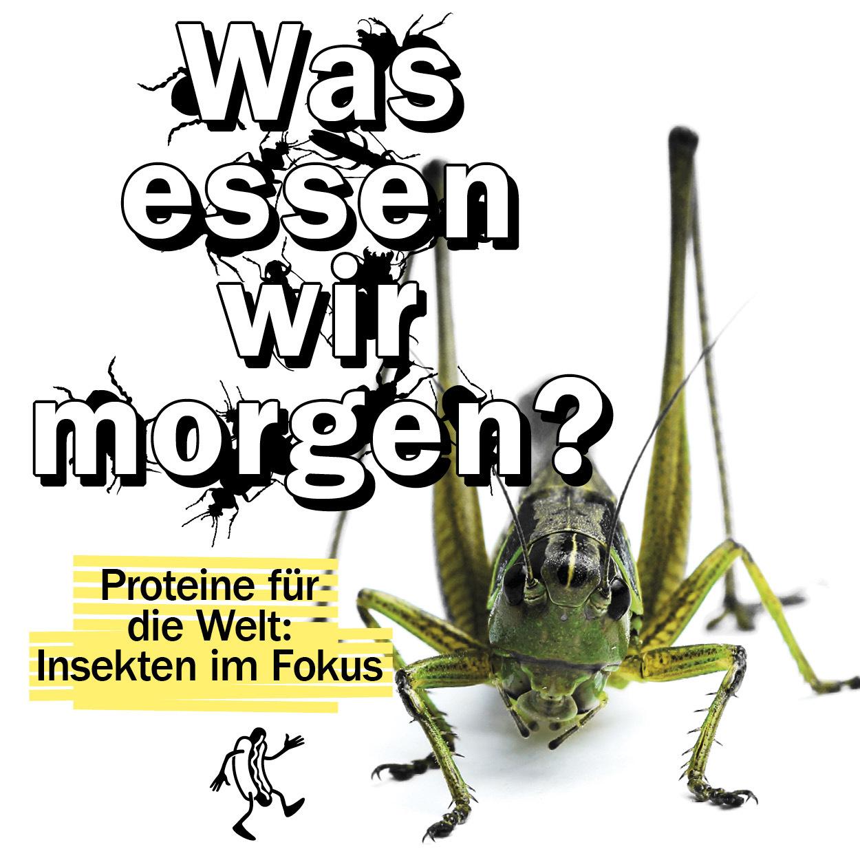Was essen wir morgenn Proteine für die Welt: Insekten im Fokus