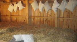 Bühler's Bauernhof: Schlafen im Stroh