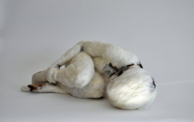 Lucy Glendinning: «Feather Child 1», 2011 / © Lucy Glendinning