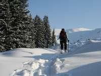 Schneeschuhwanderung auf unbekannten Pfaden in Breil/Brigels
