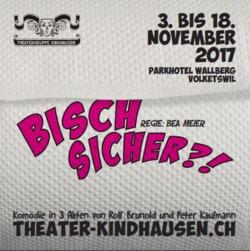 Theatergruppe Kindhausen: Bisch Sicher?! Komödie in 3 Akten