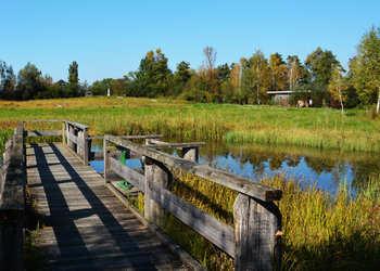 Naturstation Silberweide Herbst