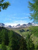 Alpenbrauerei GIRUN – Braukunst aus nächster Nähe