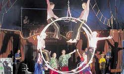 Die «Piccolos» in voller Aktion: In der Nummer Hotel Venezzia turnen sechs Kinder in einem Luftrad. (Bild: Désirée Schibig)