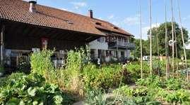 Bauernhof mit vielen Tieren ausserhalb des Dorfes. Der Gugenhof liegt auf 540 m.ü.M, 7 Km von Aarau, 10 km von Olten entfernt, zwischen Stüsslingen und Erlinsbach. Sehr ruhige Lage mit herrlicher Rundsicht. Aufenthaltsraum, Spielplatz mit Trampolin, auch für Gruppen und Anlässe ideal. Wir freuen uns auf Familien, Wanderer und Velofahrer, Gruppen jeder Art.