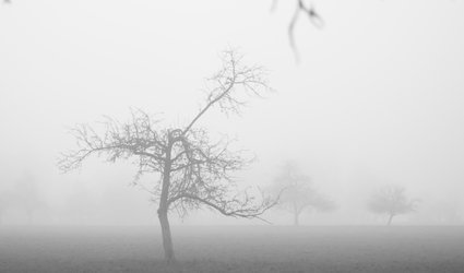 Fotoausstellung von Daniel Fritschi