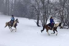 Winterreiten in Breil/Brigels