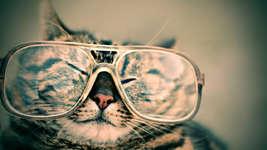 Ihr alte Brille ist nicht für die Katz, bringen Sie sie uns!