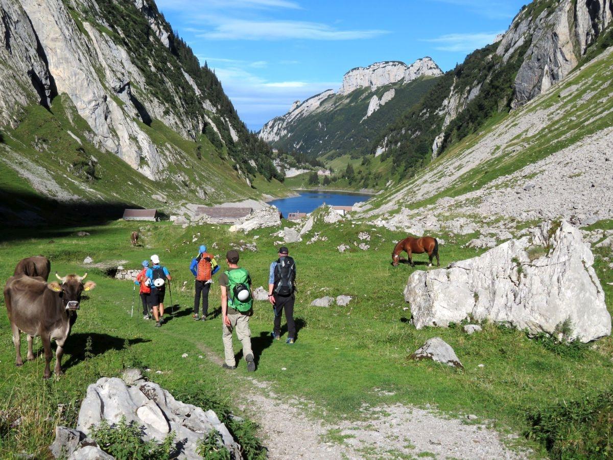 Alpine Wanderwoche im Appenzellerland