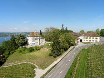 Käsefest Bodensee