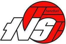 TV Solothurn Handball Logo