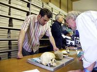 Archaeologie live