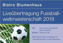 Liveübertragung Fussballweltmeisterschaft 2018